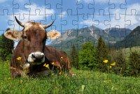 Puzzle-Postkarte Allgäu