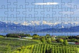 Puzzlepostkarte Bodensee 3